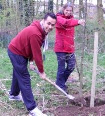 Planting an oak tree in Beaumont Leys
